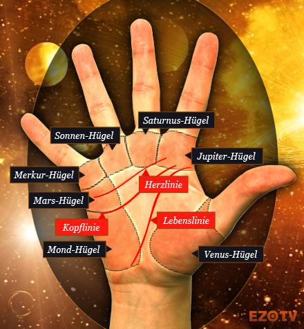 Handfläche lebenslinie Handlesen lernen: